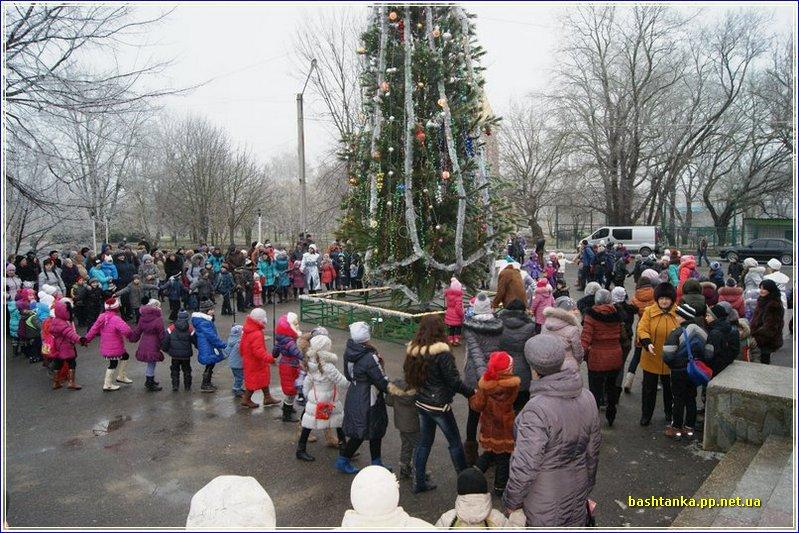 новорічна ялинка, встановлення ялинки, святкова ялинка, ялинка у центрі міста