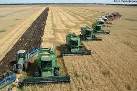 Правила безпеки при збиранні урожаю зернових